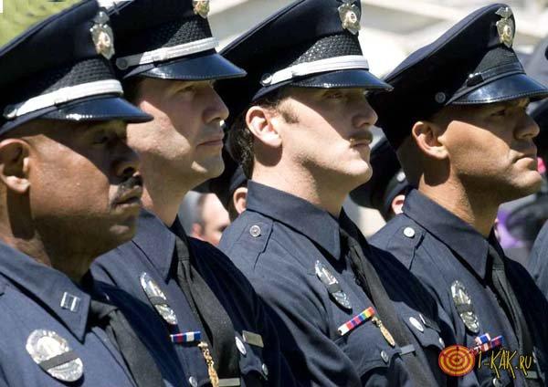 Группа полицейских в строю