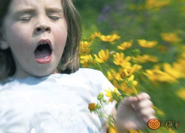 Девочка чихает от аллергии