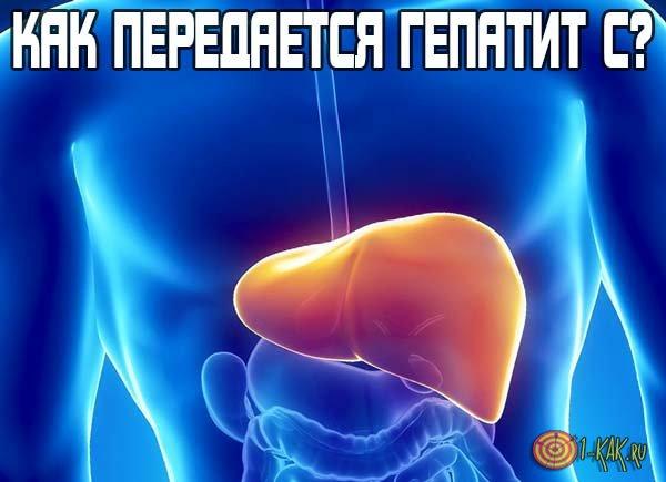 Как передается гепатит C?