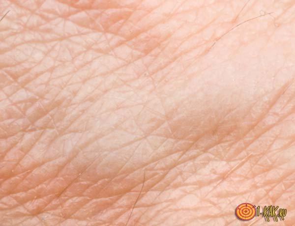 Роль кожи в жизни человека