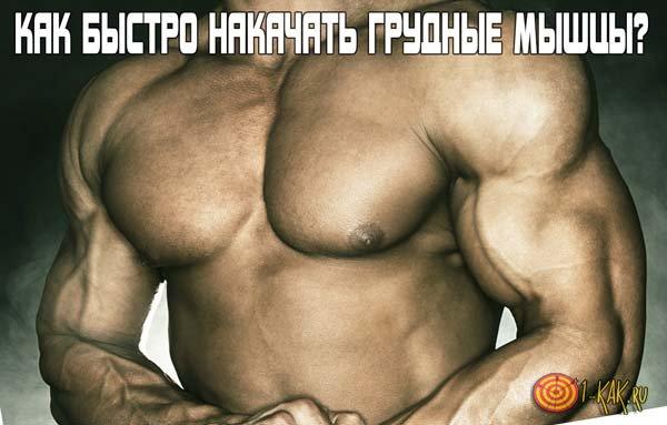 Как можно быстро накачать грудные мышцы?
