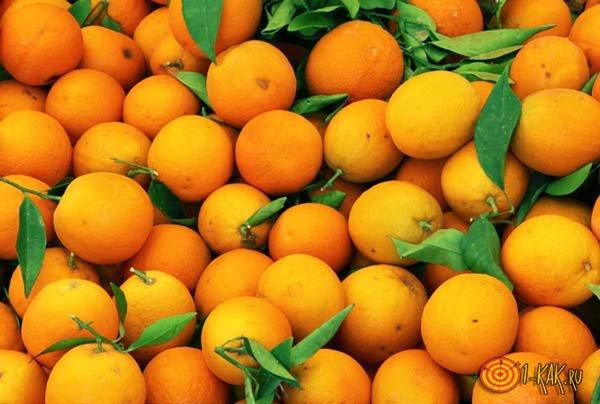 Свежие сочные апельсины
