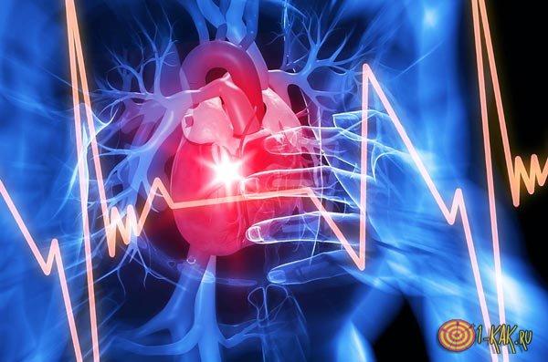 Сокращение сердечных мышц