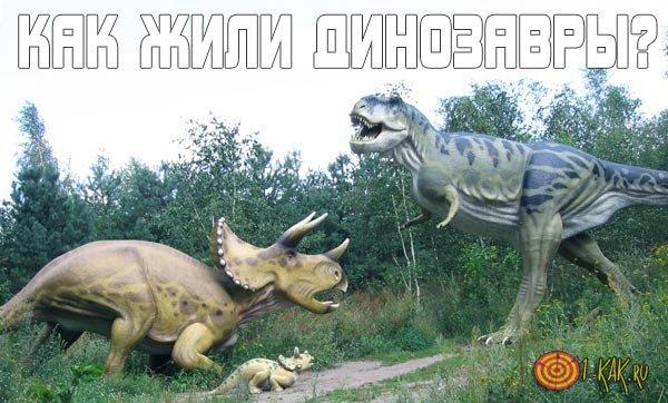 Как жили динозавры