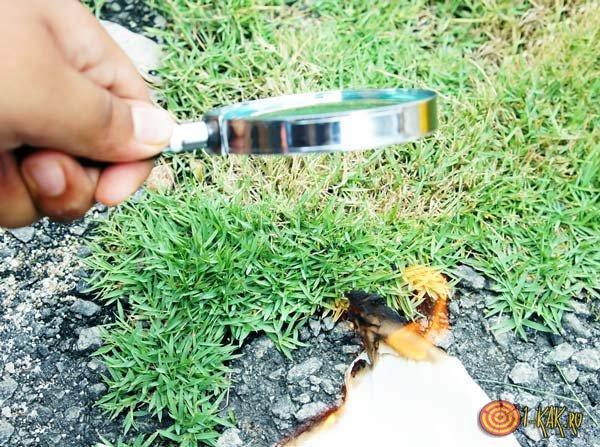 Огонь без спичек - с помощью лупы