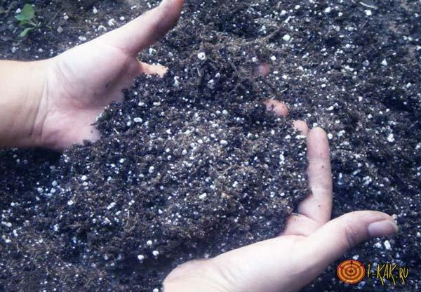 Удобряют почву фосфатом