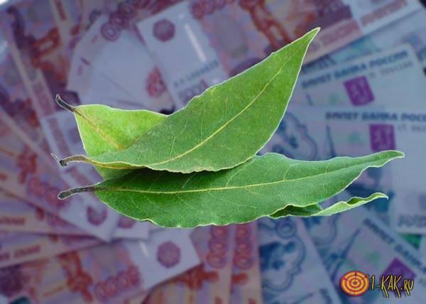 Лавровый лист и финансы