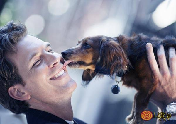 Заботится о своей собаке