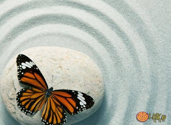 Очищение ситуации - бабочка