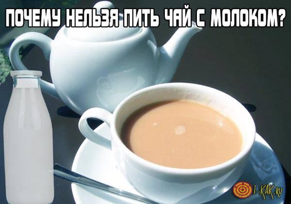 Почему нельзя пить чай с молоком