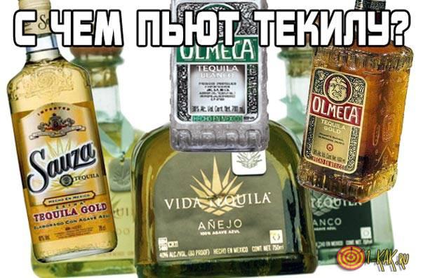 С чем можно пить текилу?