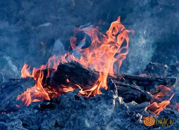Пепелище от костров
