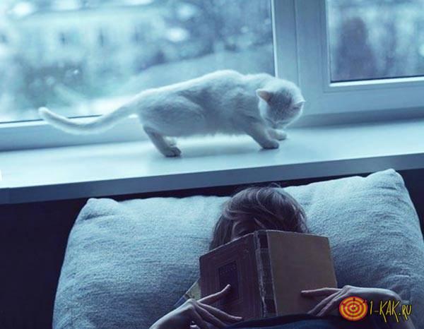Головой к окну