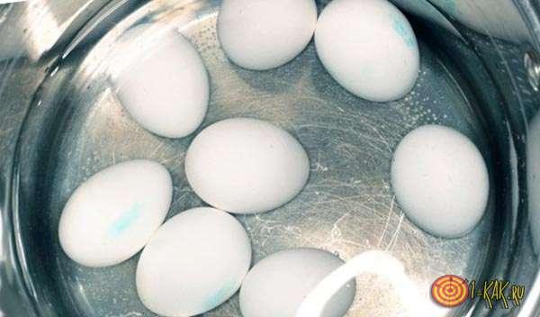 Плавающие яйца в воде