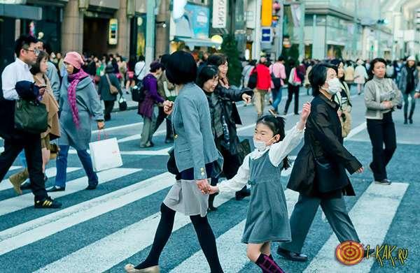 Японский социально защищенный слой