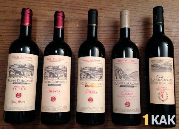 Разные сорта вин Испании