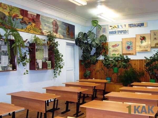 В классе растения в горшках